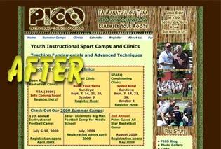 PICO Camp website AFTER shot